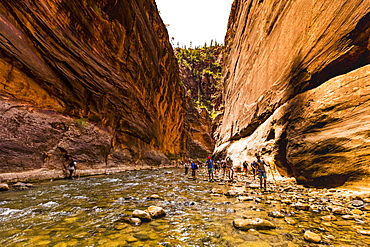Hiking along the Sand Hollow Trail, Utah, United States of America, North America