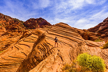 Woman hiking around the Zion National Park, Utah, United States of America, North America