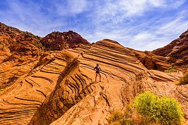 Woman hiking around the Zion National Park, Utah, United States of America, North America