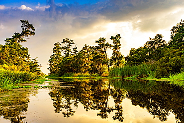 Cane Bayou, New Orleans, Louisiana, United States of America, North America