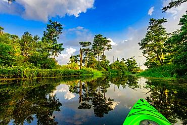 Kayaking through Cane Bayou, New Orleans, Louisiana, United States of America, North America
