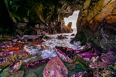 The famous Eye Hole cave at Pfeiffer Beach, Big Sur, California, United States of America, North America
