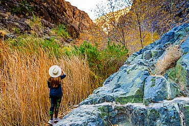 Woman hiking through the waterfall and Artist Palette Drive, Death Valley, California, United States of America, North America