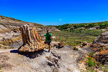 Man enjoying the view along The Petrified Forest Loop Trail inside Theodore Roosevelt National Park.