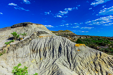 Beautiful sight on The Petrified Forest Loop Trail insideTheodore Roosevelt National Park.