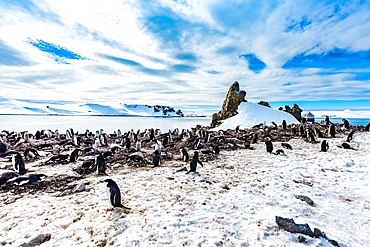 Scenic view of Chinstrap Penguins and glaciers in Antarctica, Polar Regions