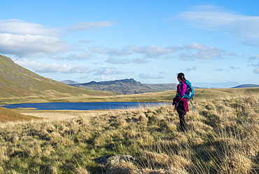 A woman trekking in the English Lake District in Wasdale looks towards Burnmoor Tarn, Lake District National Park, Cumbria, England, United Kingdom, Europe
