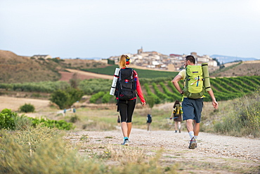 Pilgrims walking the Camino de Santiago (The Way of St. James) towards little village of Cirauqui, Navarre, Spain, Europe