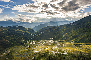 The Yuanyang terraced rice paddies in China have been fashioned over hundreds of years by the Hani, Yunnan Province, China, Asia