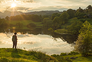 A woman looks out over Loughrigg Tarn near Ambleside in The Lake District National Park, Cumbria, England, United Kingdom, Europe