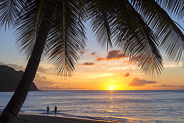 A view out to sea at sunset beneath the palm trees at Castara Bay in Tobago, Trinidad and Tobago, West Indies, Caribbean, Central America