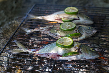 Fish barbecue on the beach at Castara Bay on the Caribbean island of Tobago, Trinidad and Tobago, West Indies, Caribbean, Central America