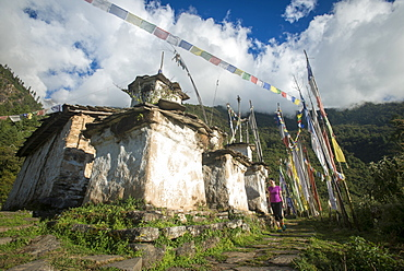 A woman trekking in the Tamang Heritage region close to the Langtang valley walks past some old chortens, Nepal, Himalayas, Asia