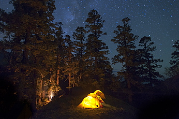 Tents glow from their inhabitants head torches in a camp perched among trees in Dolpa, a remote region of Nepal, Asia