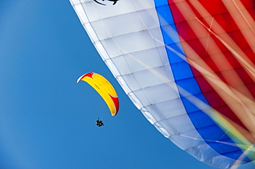 Looking up to another paraglider, Nepal, Asia