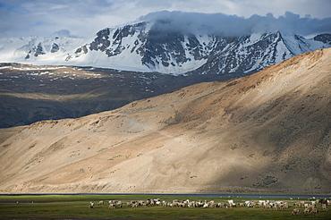 Mountains in Ladakh, Himalayas, India, Asia