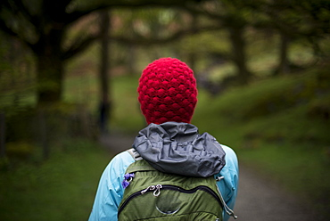 A woman walks in the woods near Grasmere in The Lake District, Cumbria, England, United Kingdom, Europe