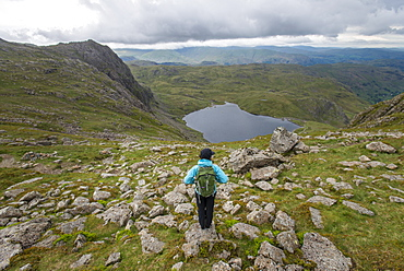 Walking in Great Langdale with a view of Stickle Tarn in the distance, Lake District National Park, Cumbria, England, United Kingdom, Europe