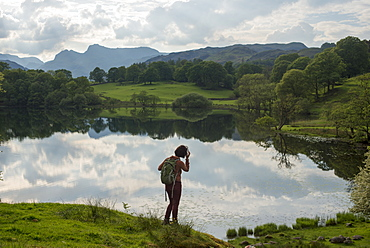 A woman looks out over Tarn Foot, Lake District National Park, Cumbria, England, United Kingdom, Europe