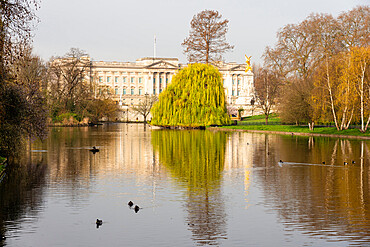 Buckingham Palace viewed from St. James's Park, London, England - 1226-1051