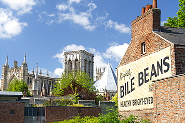 York Minster and the Bile Beans Ghost sign at Lord Mayors Walk, just outside the York city Bar Walls, York, North Yorkshire, Yorkshire, England, United Kingdom, Europe