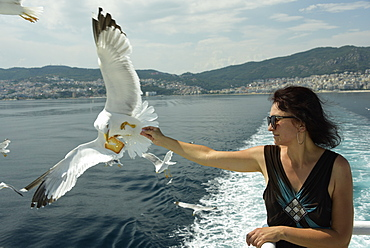 Woman feeding seagulls on a ferry from Kavala to Thassos, North Aegean Sea, Greek Islands, Greece, Europe