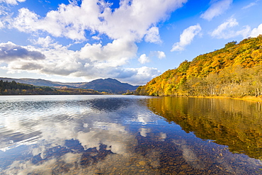 Loch Achray and Ben Venue, autumn colours, Stirling, Scotland, United Kingdom, Europe