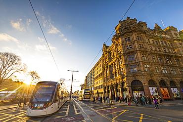 Tram at Princes Street, Jenners Store, Edinburgh, Lothian, Scotland, United Kingdom, Europe
