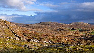 Fahee North, The Burren, County Clare, Munster, Republic of Ireland, Europe