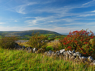 Cappanawalla, The Burren, County Clare, Munster, Republic of Ireland, Europe