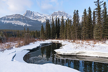 Policeman's Creek in Winter with Mount Lawrence Grassi, Canmore, Bow Valley Provincial Park, Alberta, Canada