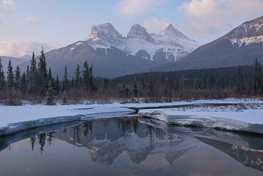 Winter sunrise at Policeman's Creek with Three Sisters Peaks, Canadian Rockies, Canmore, Alberta, Canada, North America