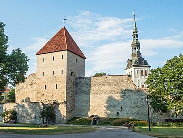 Medieval city wall, Tallinn, Estonia, Baltics, Europe