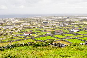 Bleak flat landscape of stone-walled farms, Inishmaan, Aran Islands, County Galway, Connacht, Republic of Ireland, Europe