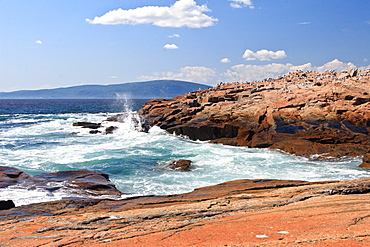 Coastline, Maine, New England, United States of America, North America