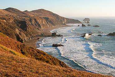 Goat Rock Beach, near Jenner, California, United States of America, North America