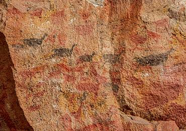 Cueva de las Manos, UNESCO World Heritage Site, Rio Pinturas Canyon, Santa Cruz Province, Patagonia, Argentina, South America