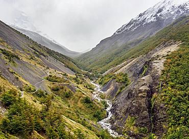 Ascencio River, Torres del Paine National Park, Patagonia, Chile, South America