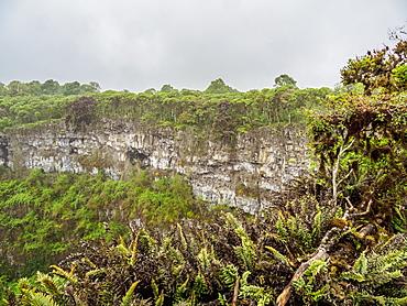 Los Gemelos Volcano, Santa Cruz (Indefatigable) Island, Galapagos, UNESCO World Heritage Site, Ecuador, South America