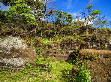 Rock Labyrinth, Asilo de la Paz, Highlands of Floreana (Charles) Island, Galapagos, UNESCO World Heritage Site, Ecuador, South America