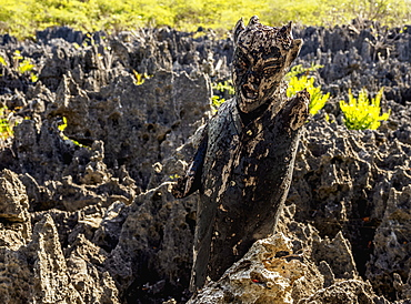 Devil Figure in Hell, West Bay, Grand Cayman, Cayman Islands, Caribbean, Central America