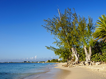 Seven Mile Beach, George Town, Grand Cayman, Cayman Islands, Caribbean, Central America