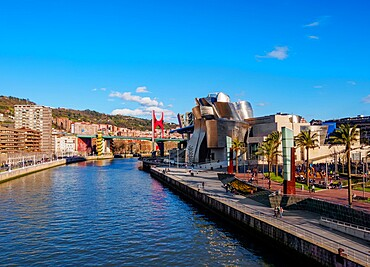 The Guggenheim Museum in Bilbao, Biscay, Basque Country, Spain, Europe