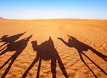 Shadows of people riding camels in a caravan in Zagora Desert, Draa-Tafilalet Region, Morocco, North Africa, Africa