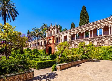 Gardens in Reales Alcazares de Sevilla (Alcazar of Seville), UNESCO World Heritage Site, Seville, Andalusia, Spain, Europe