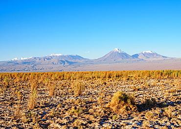 Salar de Atacama, Atacama Desert, Antofagasta Region, Chile, South America