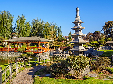 Japanese Garden, La Serena, Coquimbo Region, Chile, South America