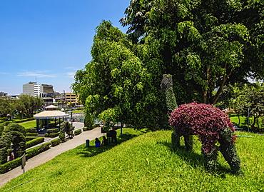 Green Llama in Parque de la Amistad (Friendship Park), Santiago de Surco District, Lima, Peru, South America