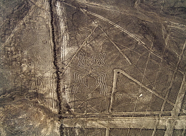 The Spider Geoglyph, aerial view, Nazca, UNESCO World Heritage Site, Ica Region, Peru, South America