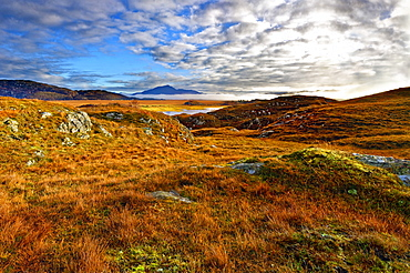 An autumn view of the colorful grass covered hills and moors of Kentra Bay as mist forms below the mountains on the horizon, Highlands, Scotland, United Kingdom, Europe - 1246-15